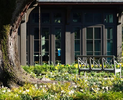 Plantation gardens of Charleston SC LEnhardt Garden at Drayton Hall