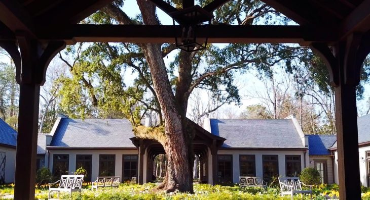 historic garden must see in Charleston sc th eLEndhardt Garden at Drayton Halll